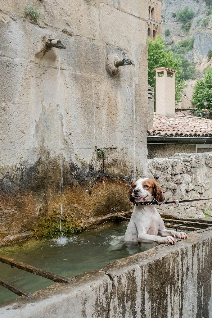 Provence-2017-1.jpg